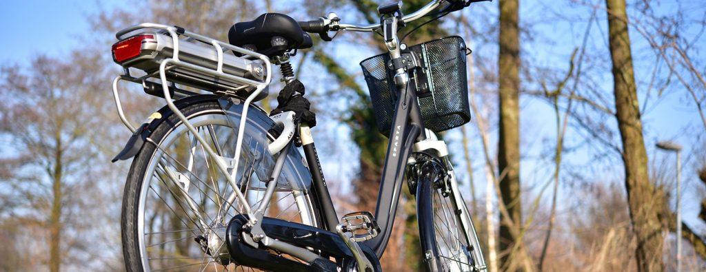 E-Bike auf einer Wiese